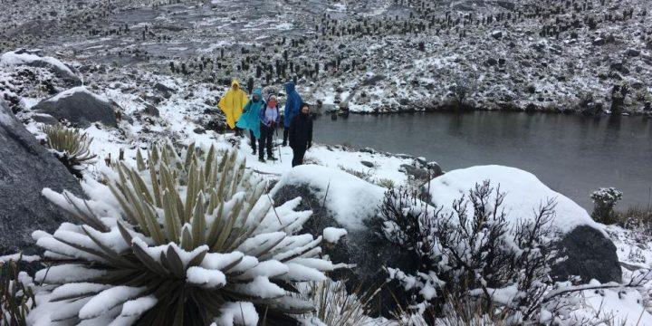 ¡Mágico! La espectacular nevada sobre el parque del Cocuy