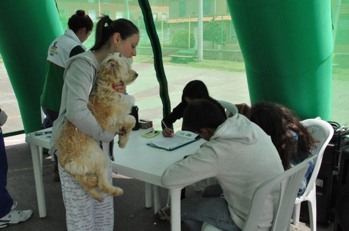 Atención hay más de 500 cupos para esterilización felina y canina en Chía.