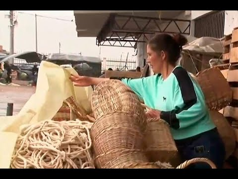 Boyacá quiere poner de moda el canasto de fibra para desbancar el uso de plástico