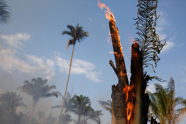 Así es como los incendios en Brasil afectarían el agua de Colombia