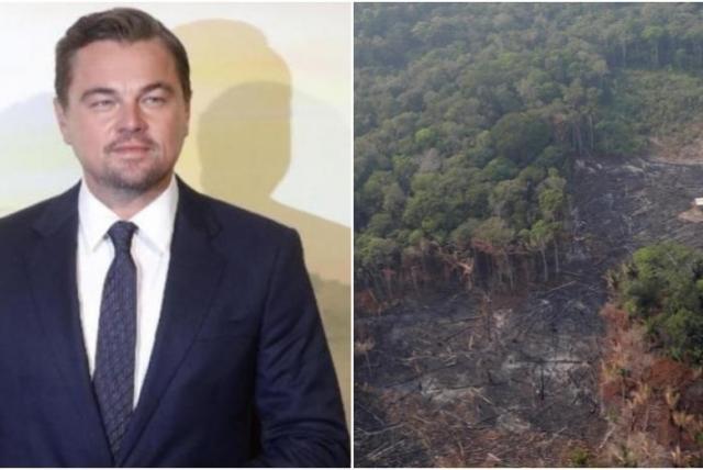 La millonaria donación de Leonardo DiCaprio para salvar el Amazonas