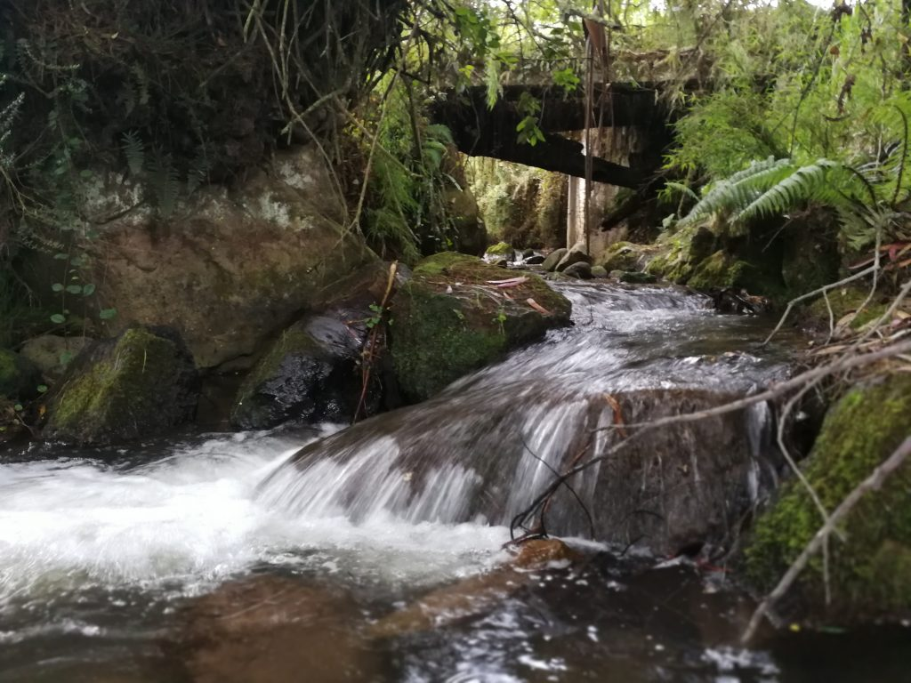 En Zipaquirá