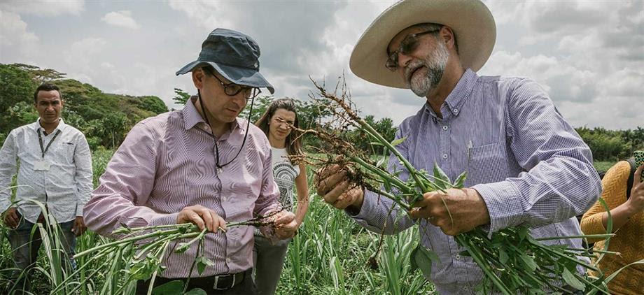 Entre enero y agosto de 2019 se aseguraron 108.513 hectáreas, una cifra histórica