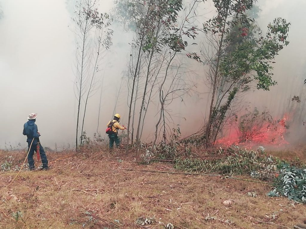 Alerta en al menos 10 municipios de Cundinamarca por incendios forestales