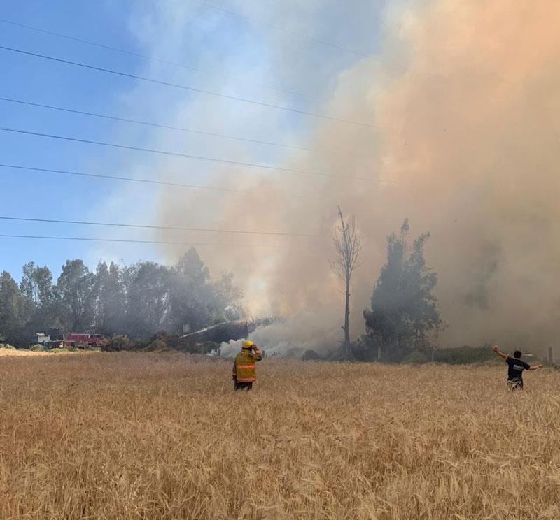 Devastador incendio forestal en Funza, Cundinamarca Incendio forestal, Funza, Cundinamarca