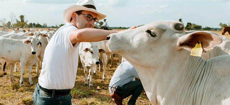 Programa de alimentación bovina de MinAgricultura beneficia a 11.000 productores de Boyacá y Cundinamarca