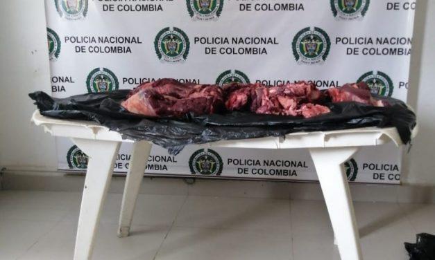 CTI incauta 2 toneladas de carne de dudosa procedencia en Santa Rosa de Osos (Antioquia)