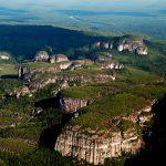 Reino Unido anunció fondos por $288 mil millones para apoyar protección del bosque amazónico y los bosques tropicales de Colombia