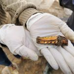 Encuentran restos arqueológicos en el centro de Bogotá