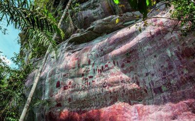 Prepárese para disfrutar de la exposición virtual en homenaje al Parque Nacional Natural Serranía de Chiribiquete