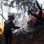 Alerta en Cundinamarca por aumento de incendios forestales