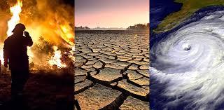 """La lucha contra el cambio climático de """"los hijos de la naturaleza"""""""