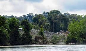 Fondo Verde del Clima aprobó 28 millones de dólares a Colombia por su lucha contra la deforestación en la Amazonía