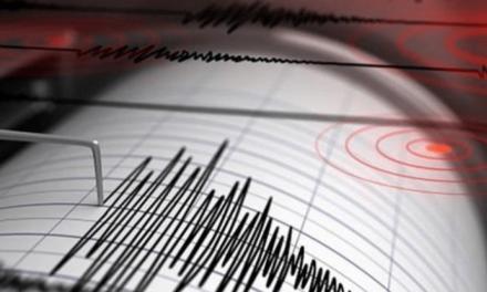 Sismo de magnitud 4,6 sacudió el centro de Colombia