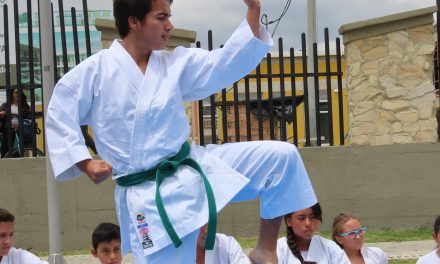 Chía participa en competencia virtual departamental de Karate Do