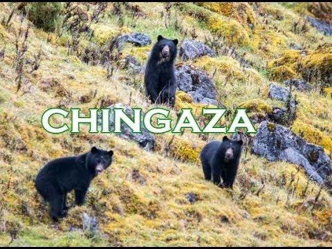 Parque Nacional Natural Chingaza incluido en la Lista Verde Internacional de Áreas Protegidas y Conservadas