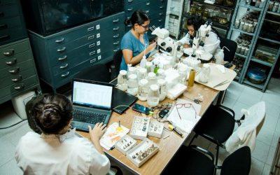 125 mil millones de pesos para potenciar proyectos de desarrollo en las regiones del país en Ciencia y Tecnología