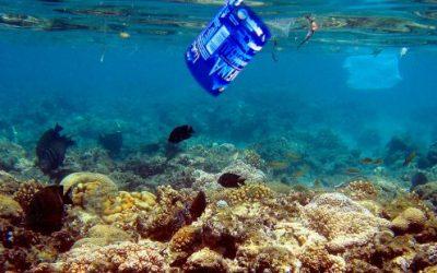 Cada año se vierten al Mediterráneo 229.000 toneladas de plástico