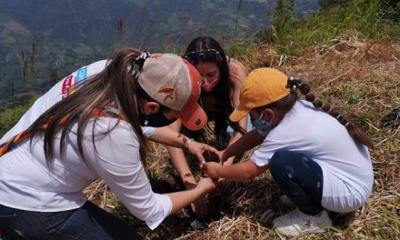 Entra en funcionamiento la Dirección de Educación y Cultura Ambiental en Cundinamarca