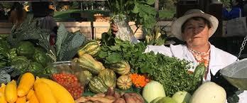 Cundinamarca, primer departamento del país en asegurar a sus pequeños y medianos productores