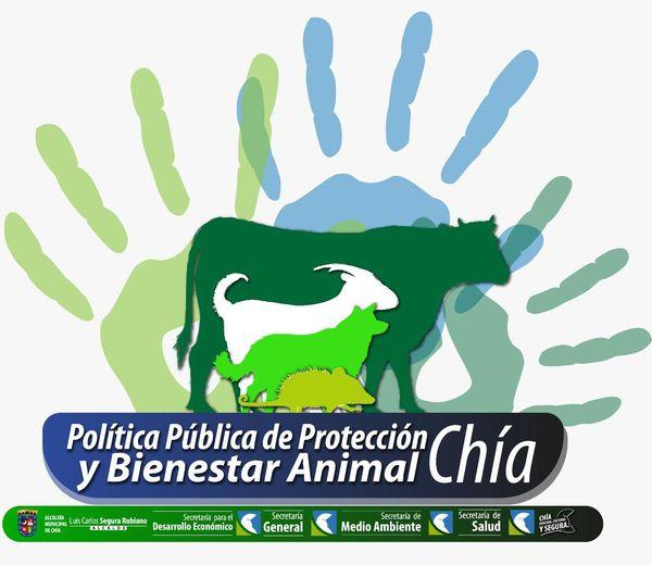 Participa en la construcción de la Política Pública de la protección y bienestar animal
