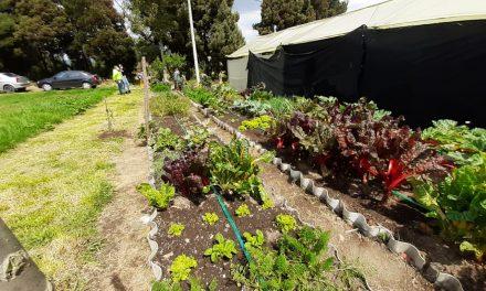 Primeras fincas agroecológicas del municipio, programa de sostenibilidad